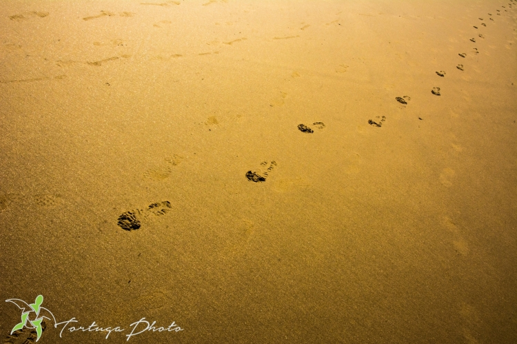 trace de pas dans le sable